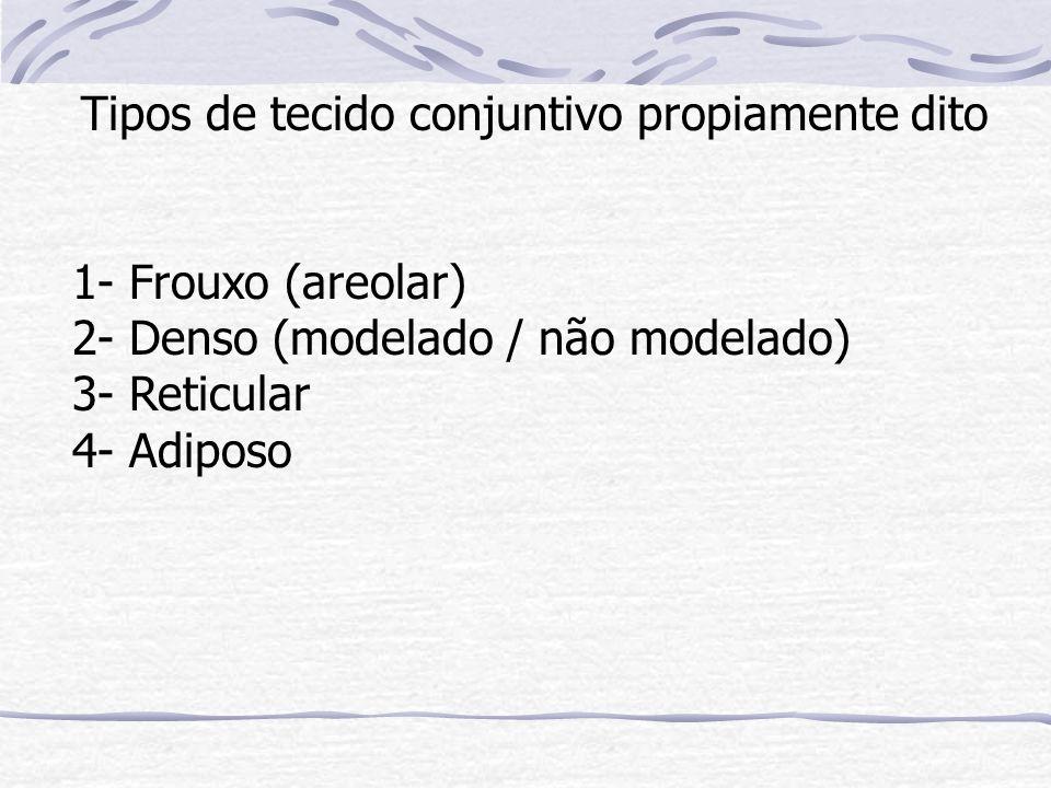 Tipos de tecido conjuntivo propiamente dito 1- Frouxo (areolar) 2- Denso (modelado / não modelado) 3- Reticular 4- Adiposo