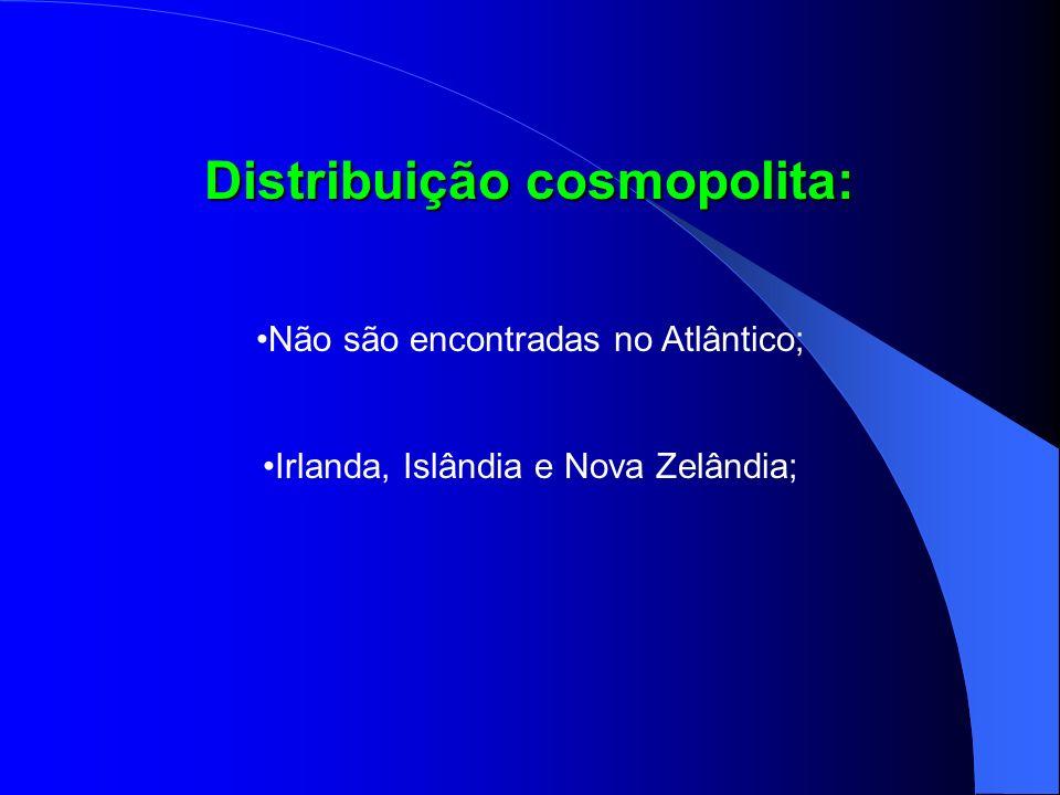 Distribuição cosmopolita: Não são encontradas no Atlântico; Irlanda, Islândia e Nova Zelândia;