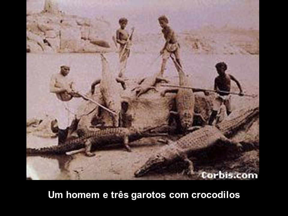 Um homem e três garotos com crocodilos