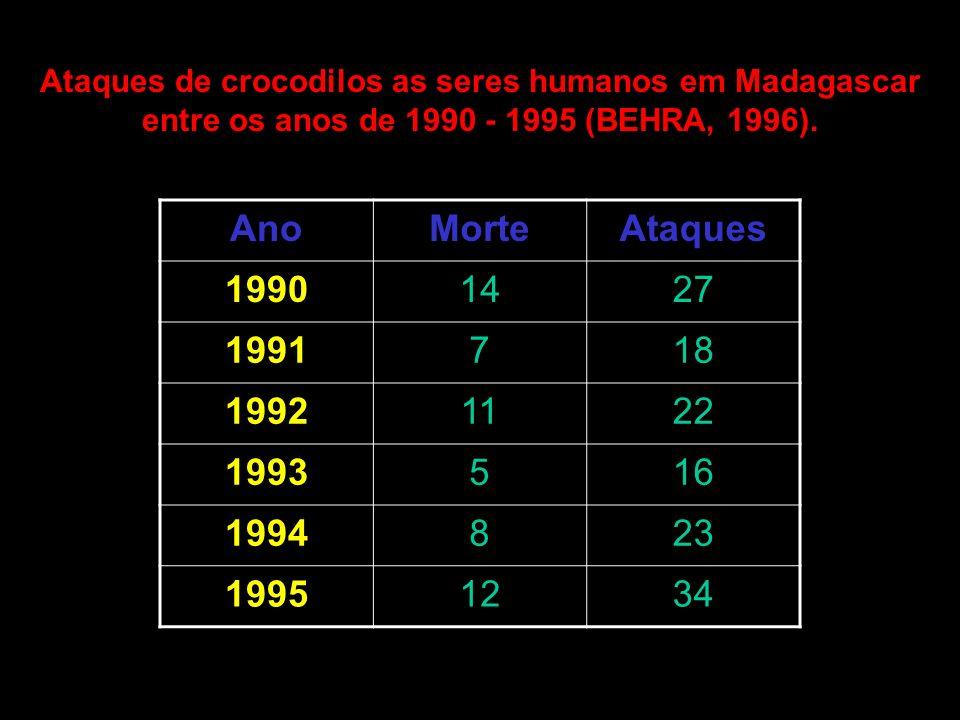 Ataques de crocodilos as seres humanos em Madagascar entre os anos de 1990 - 1995 (BEHRA, 1996). AnoMorteAtaques 19901427 1991718 19921122 1993516 199