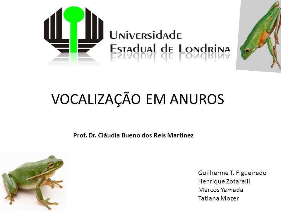 VOCALIZAÇÃO EM ANUROS Guilherme T. Figueiredo Henrique Zotarelli Marcos Yamada Tatiana Mozer Prof. Dr. Cláudia Bueno dos Reis Martinez