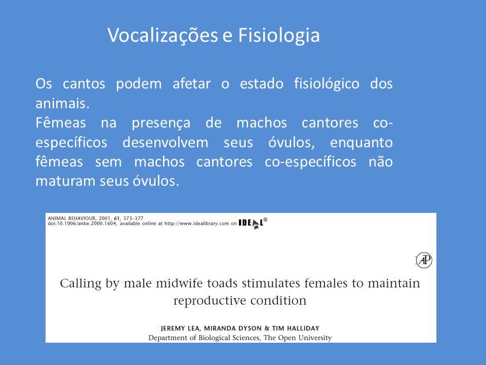 Vocalizações e Fisiologia Os cantos podem afetar o estado fisiológico dos animais. Fêmeas na presença de machos cantores co- específicos desenvolvem s