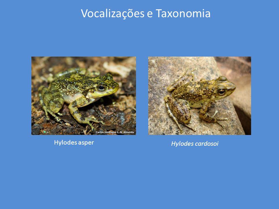 Vocalizações e Taxonomia Anteriormente a 2008, conforme a literatura Hylodes asper ocorria do Rio de Janeiro até Santa Catarina.