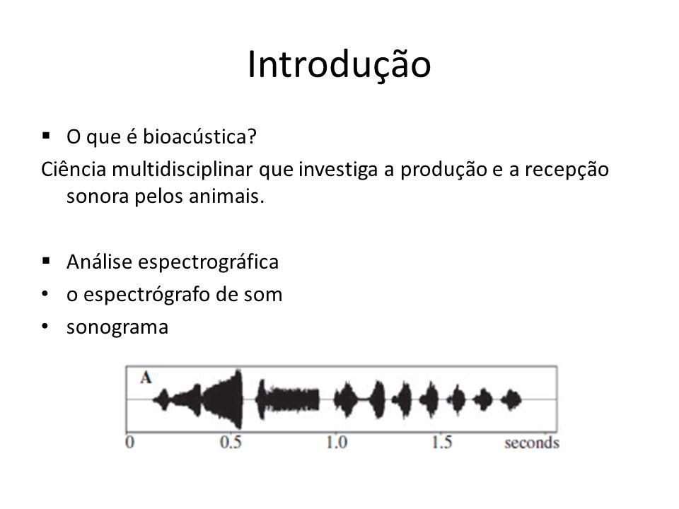 Introdução O que é bioacústica? Ciência multidisciplinar que investiga a produção e a recepção sonora pelos animais. Análise espectrográfica o espectr
