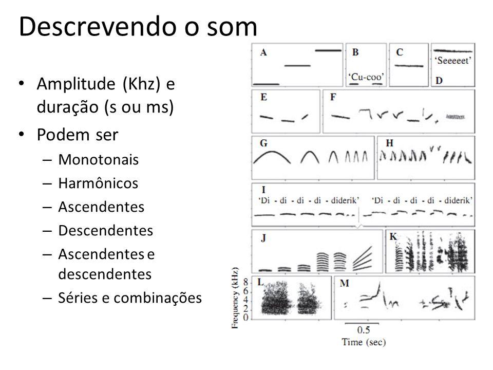 Descrevendo o som Amplitude (Khz) e duração (s ou ms) Podem ser – Monotonais – Harmônicos – Ascendentes – Descendentes – Ascendentes e descendentes –