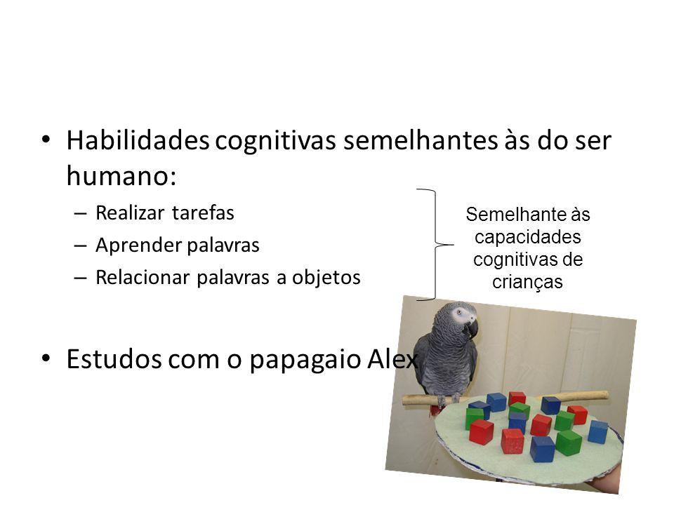 Habilidades cognitivas semelhantes às do ser humano: – Realizar tarefas – Aprender palavras – Relacionar palavras a objetos Estudos com o papagaio Ale