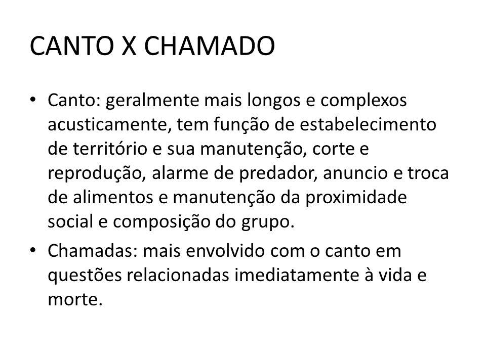 CANTO X CHAMADO Canto: geralmente mais longos e complexos acusticamente, tem função de estabelecimento de território e sua manutenção, corte e reprodu