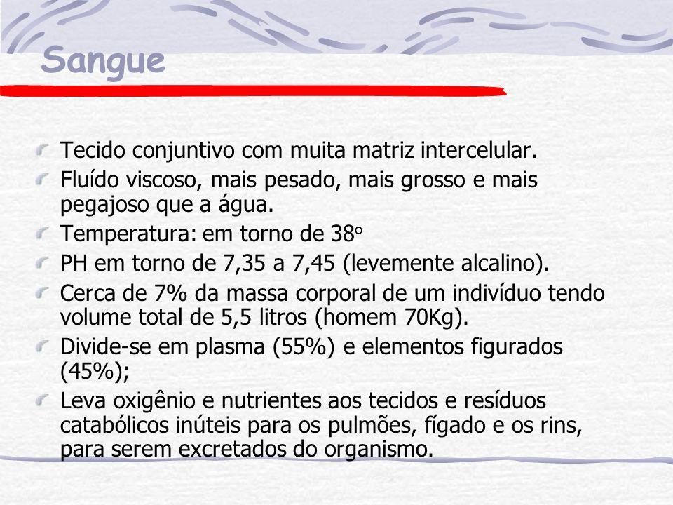 Hemoglobina pigmento carreador de oxigênio.