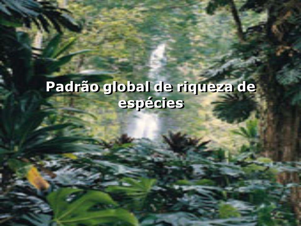 Padrão global de riqueza de espécies