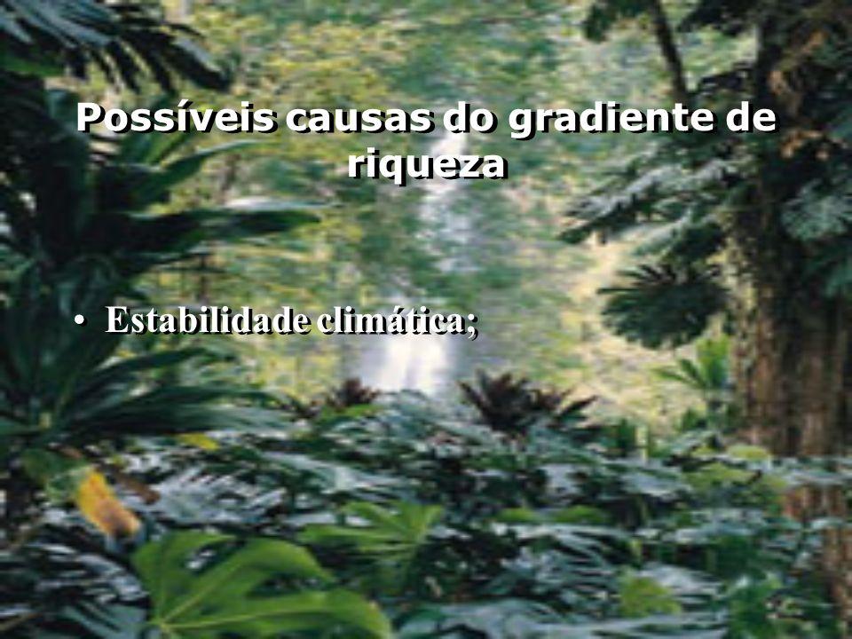 Possíveis causas do gradiente de riqueza Estabilidade climática;