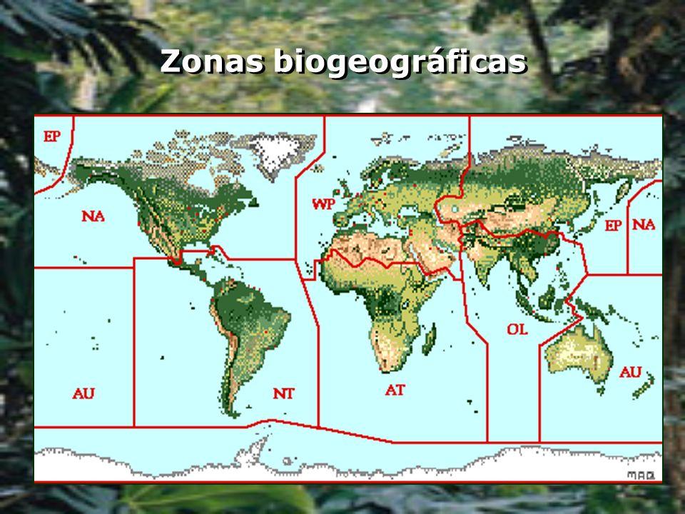 Zonas biogeográficas