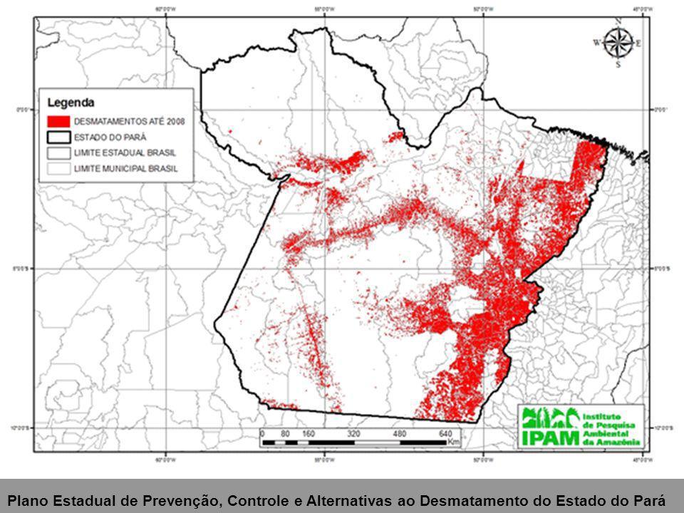 Mapa dos conflitos de uso na bacia experimental do Rio Claro