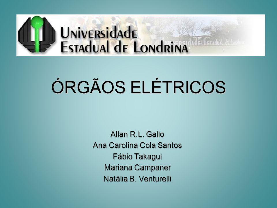 ÓRGÃOS ELÉTRICOS Allan R.L. Gallo Ana Carolina Cola Santos Fábio Takagui Mariana Campaner Natália B. Venturelli
