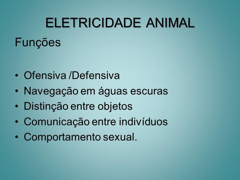 ELETRICIDADE ANIMAL Funções Ofensiva /Defensiva Navegação em águas escuras Distinção entre objetos Comunicação entre indivíduos Comportamento sexual.