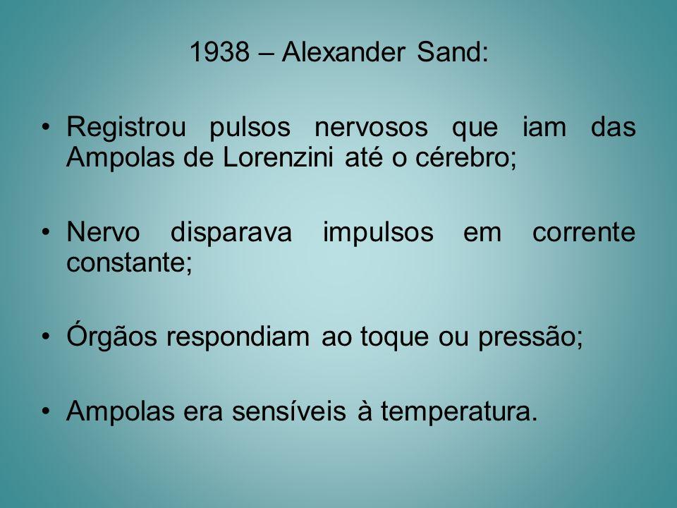 1938 – Alexander Sand: Registrou pulsos nervosos que iam das Ampolas de Lorenzini até o cérebro; Nervo disparava impulsos em corrente constante; Órgão