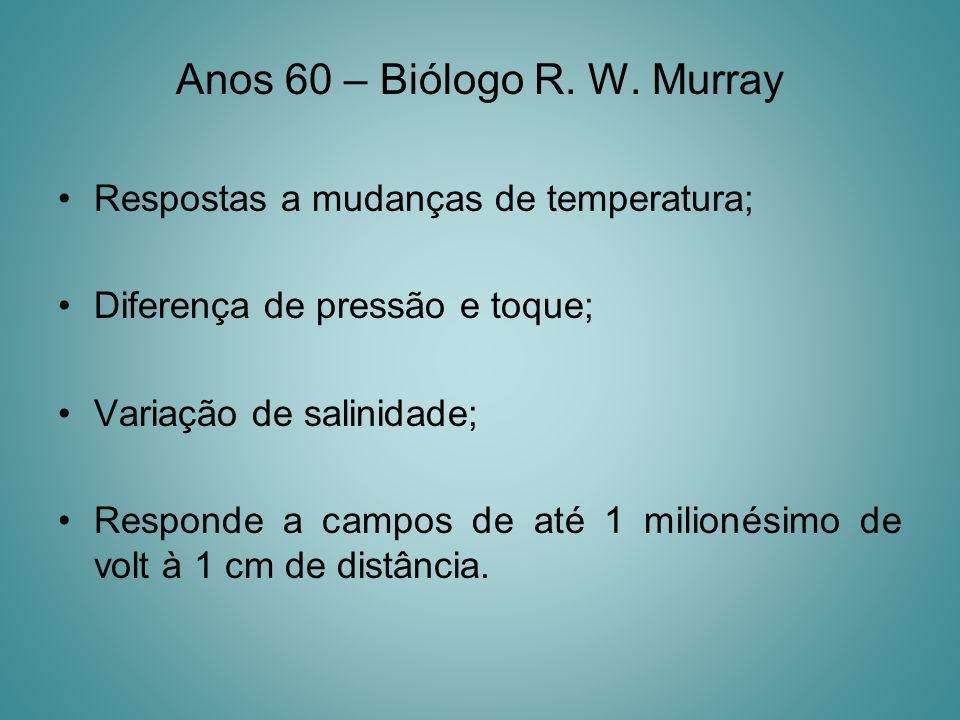 Anos 60 – Biólogo R. W. Murray Respostas a mudanças de temperatura; Diferença de pressão e toque; Variação de salinidade; Responde a campos de até 1 m