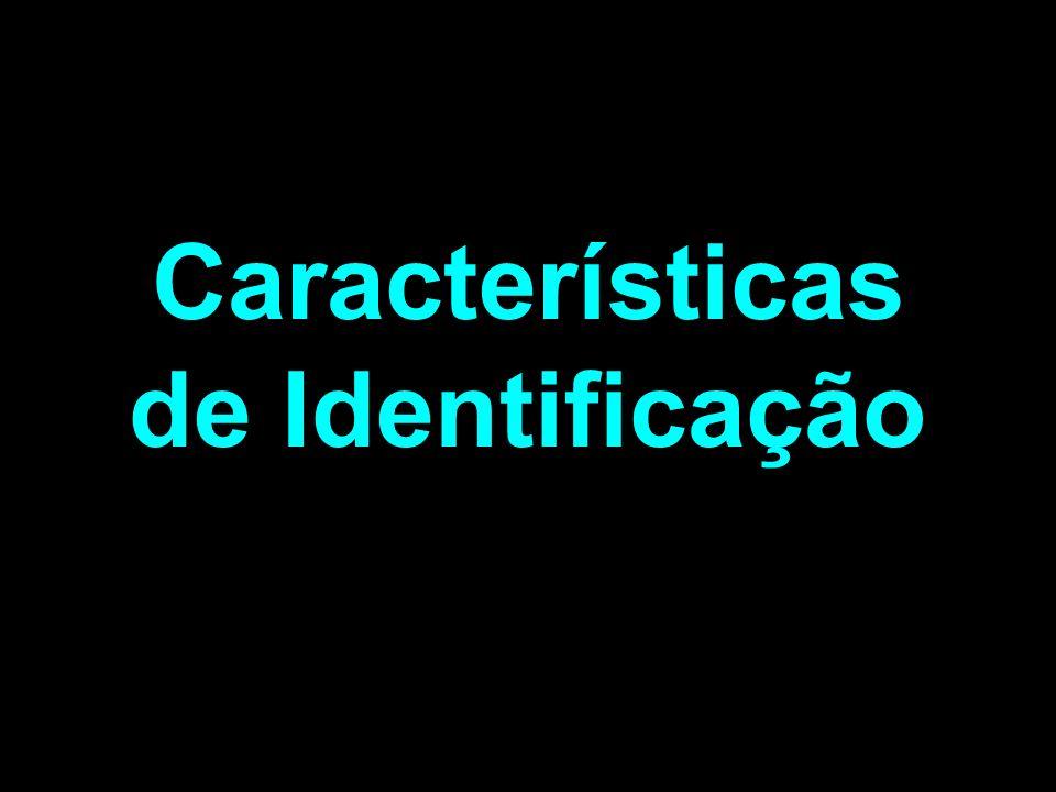 1. Ararinha-azul (Cyanopsitta spixii) 2. Ararinha-azul-de-Lear (Anodorhynchus leari) 3. Arara-azul grande (Anodorhynchus hyacinthinus) 4. Arara cinza-