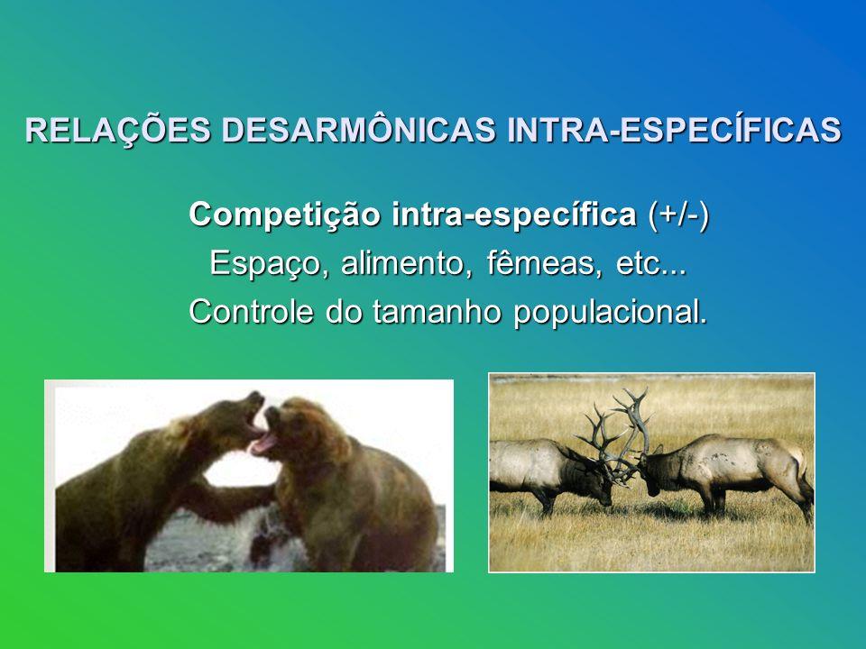 RELAÇÕES DESARMÔNICAS INTRA-ESPECÍFICAS Competição intra-específica (+/-) Competição intra-específica (+/-) Espaço, alimento, fêmeas, etc...