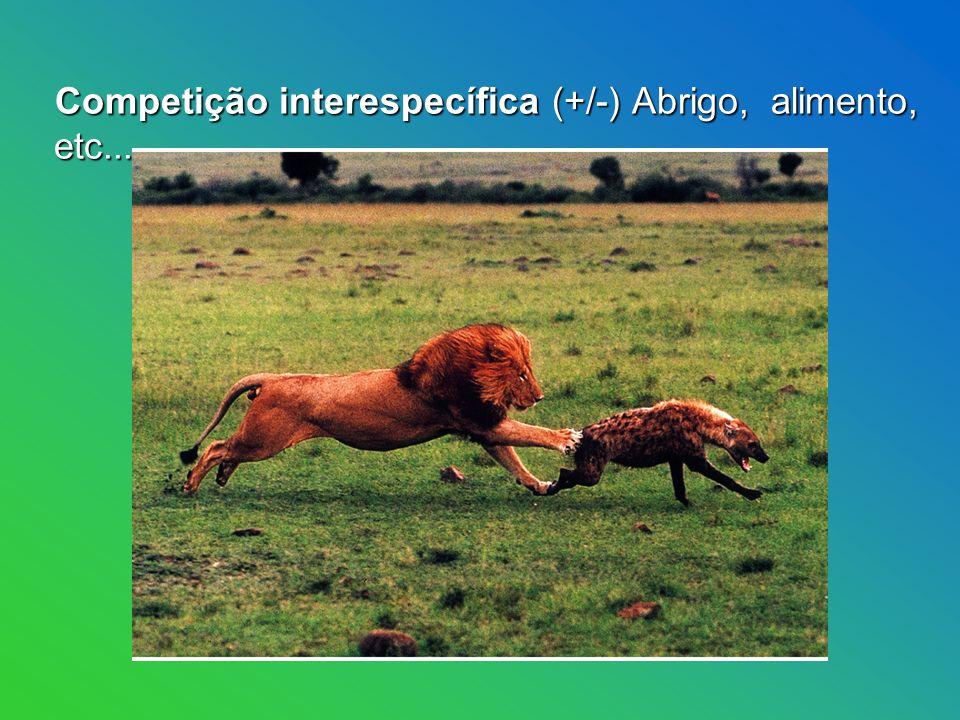 Competição interespecífica (+/-) Abrigo, alimento, etc...