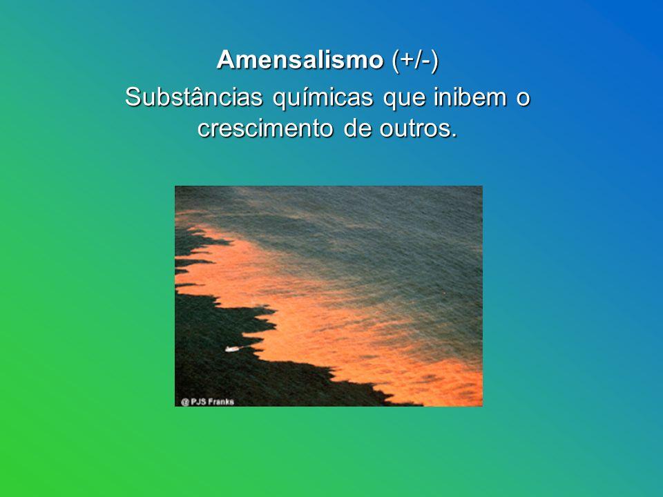 Amensalismo (+/-) Amensalismo (+/-) Substâncias químicas que inibem o crescimento de outros.