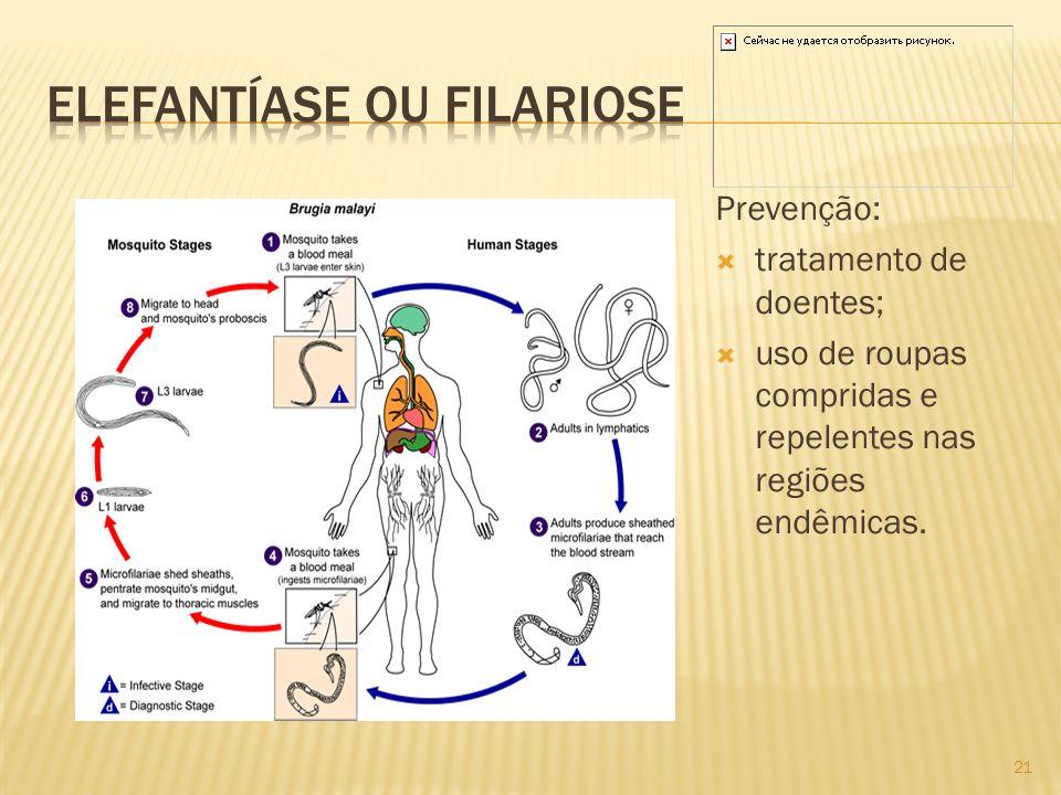 Prevenção: tratamento de doentes; uso de roupas compridas e repelentes nas regiões endêmicas. 21