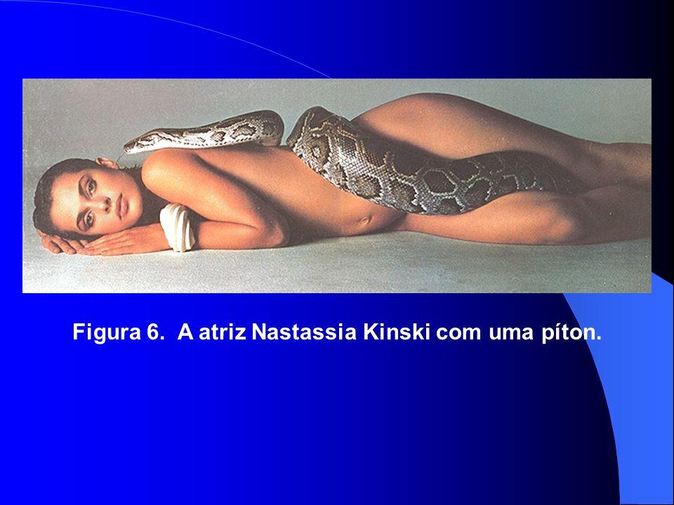 Figura 6. A atriz Nastassia Kinski com uma píton.