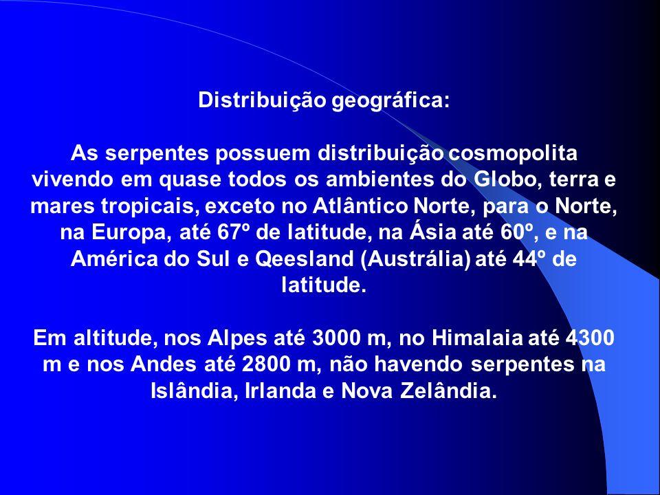 Distribuição geográfica: As serpentes possuem distribuição cosmopolita vivendo em quase todos os ambientes do Globo, terra e mares tropicais, exceto n