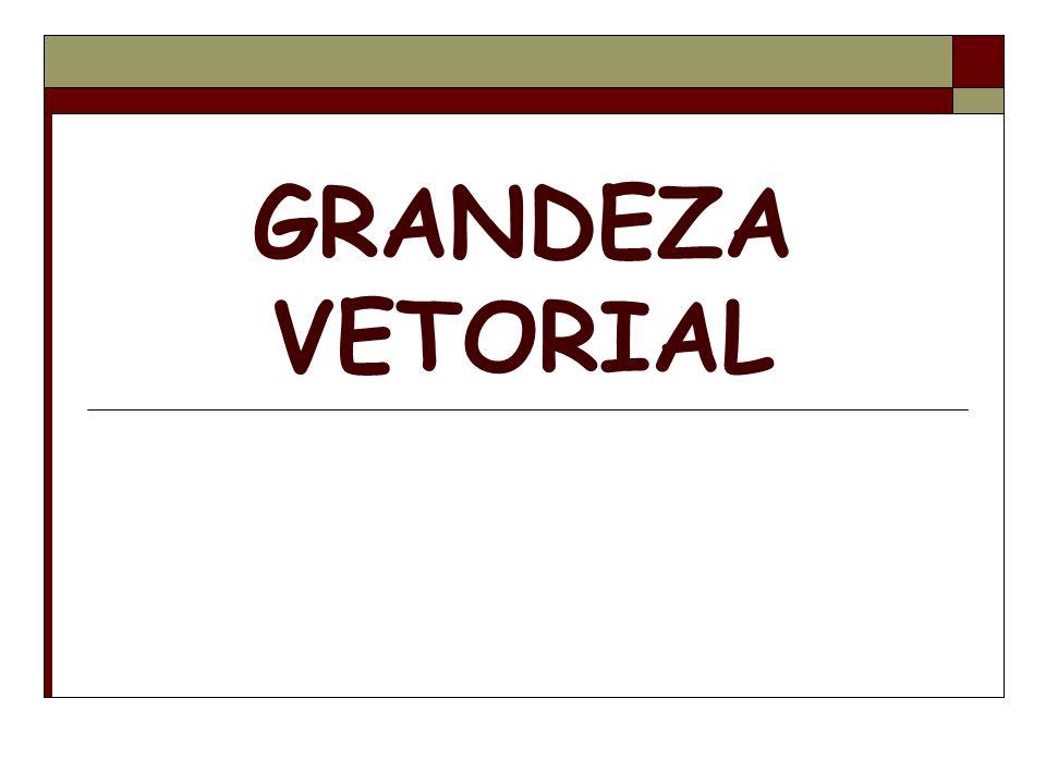 GRANDEZA VETORIAL