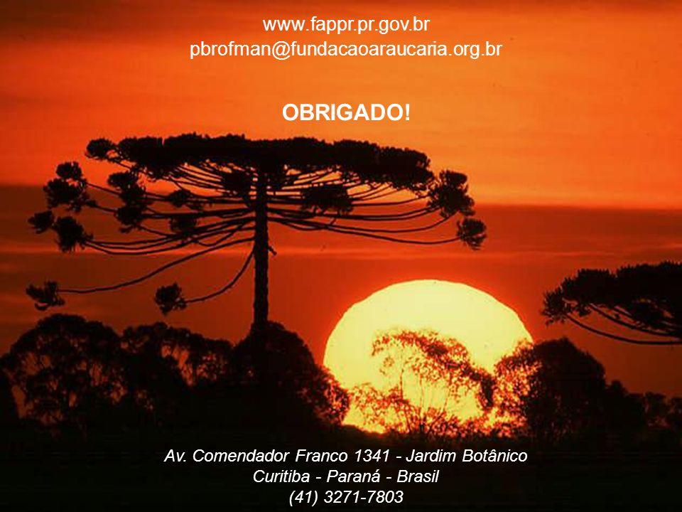 www.fappr.pr.gov.br pbrofman@fundacaoaraucaria.org.br OBRIGADO.