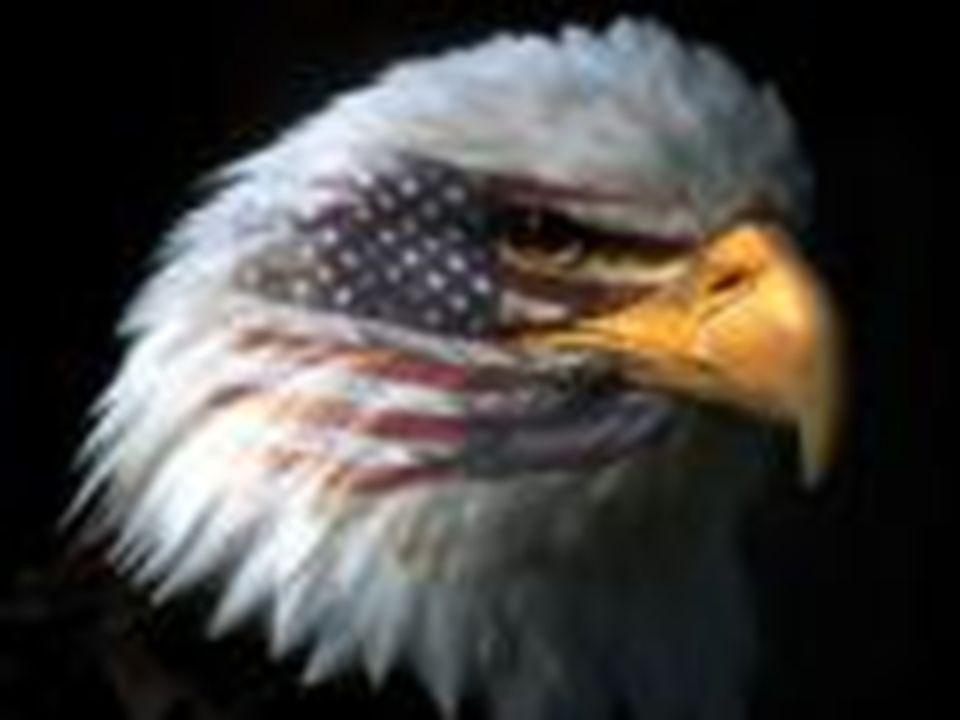 EUA CIA (ESPIONAGEM) CAÇA AOS COMUNISTAS MACARTHISMO CORRIDA ARMAMENTISTA PROPAGANDA PRÓ CAPITALISMO INTERVENCIONISMO CRISE FISCAL