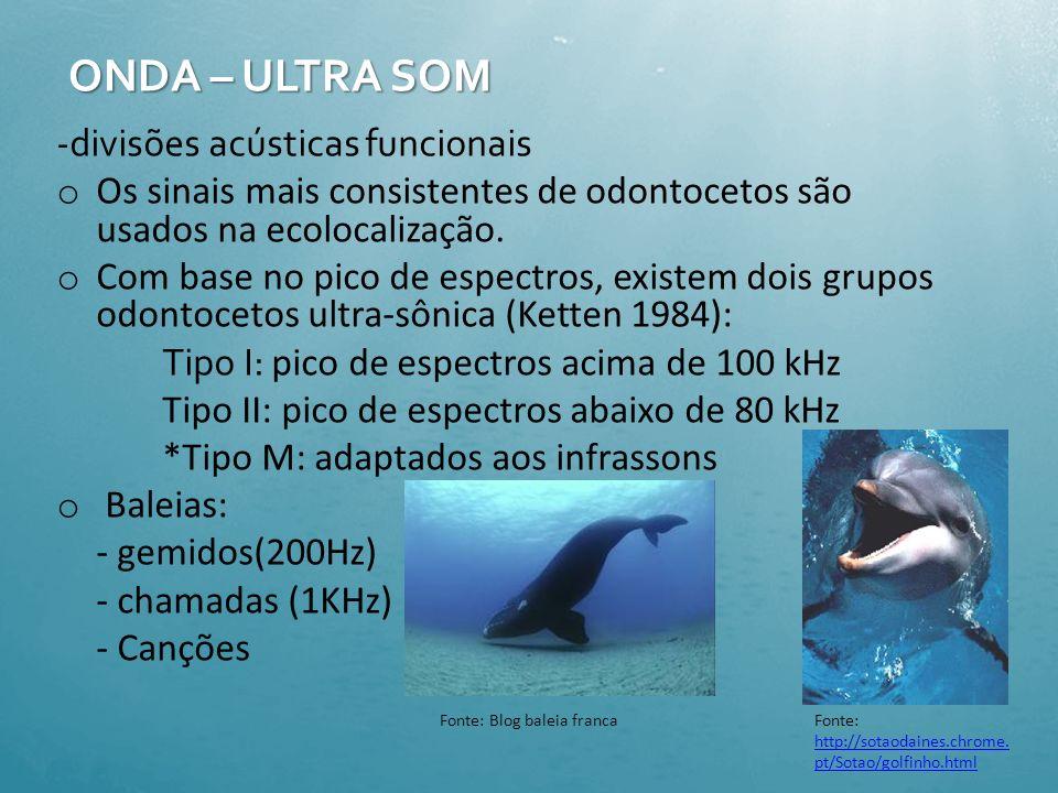 -A velocidade de difusão do som é cinco vezes mais rápida na água do que no ar - Cetáceos e provavelmente Pinípedes produzem uma grande variedade de s