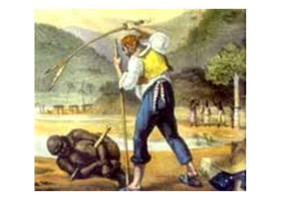 Junto da idéia de paraíso racial de negros e brancos, eles também divulgavam a idéia de inferioridade dos negros.