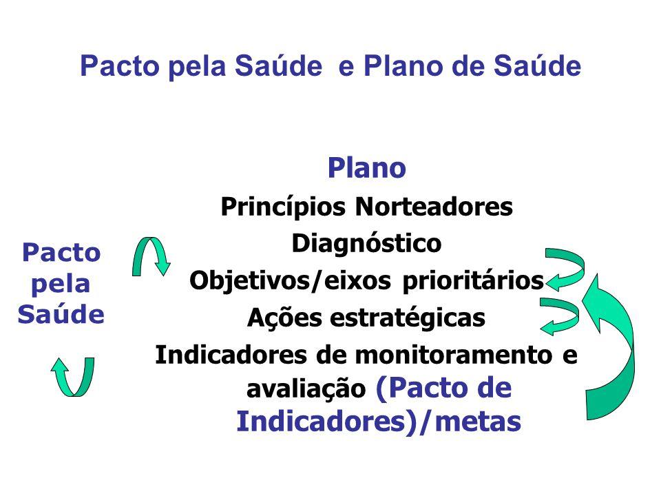 Plano Princípios Norteadores Diagnóstico Objetivos/eixos prioritários Ações estratégicas Indicadores de monitoramento e avaliação (Pacto de Indicadore