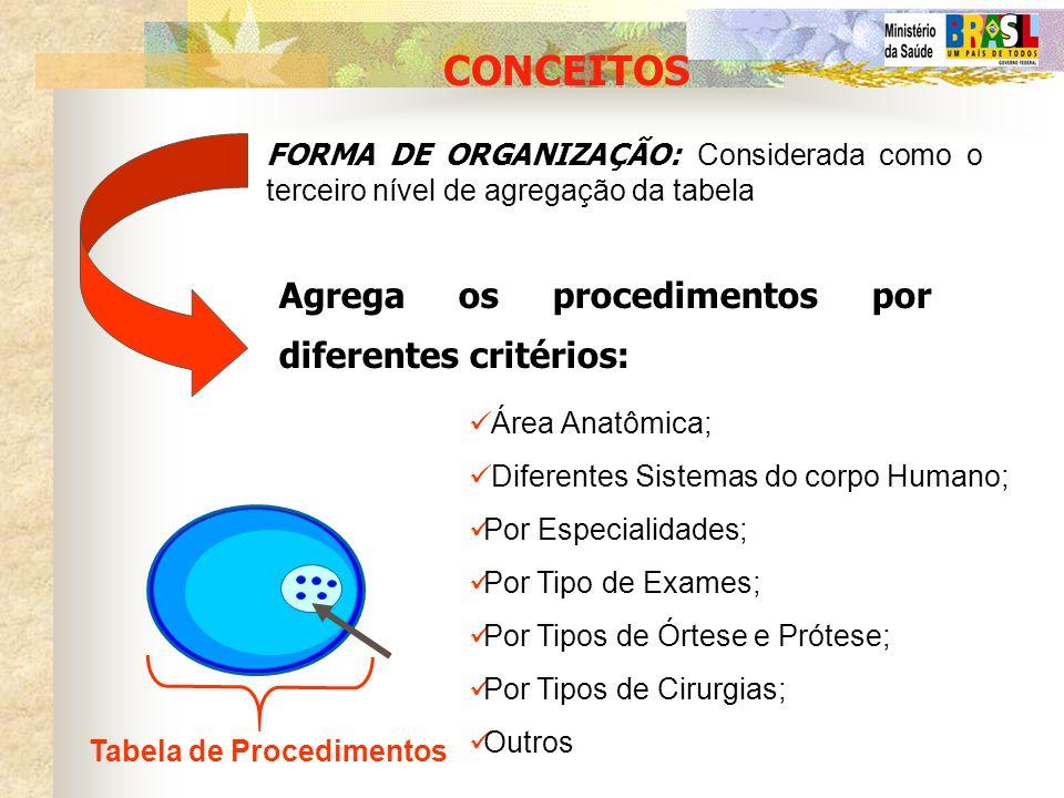 FORMA DE ORGANIZAÇÃO: Considerada como o terceiro nível de agregação da tabela Agrega os procedimentos por diferentes critérios: CONCEITOS Área Anatôm
