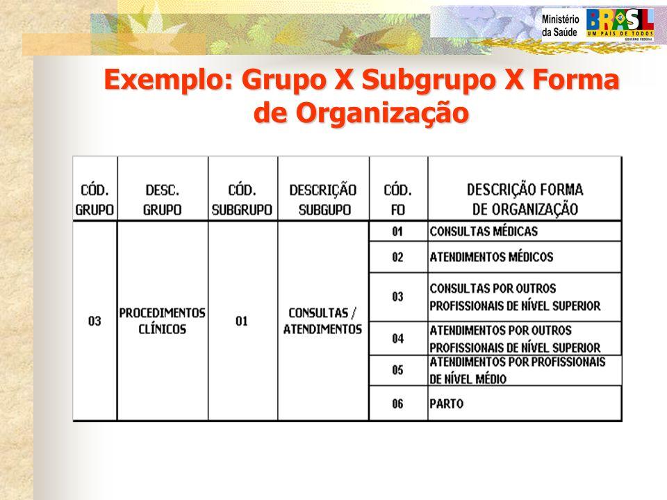 Exemplo: Grupo X Subgrupo X Forma de Organização