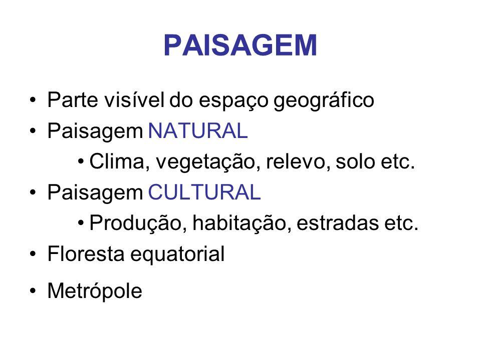 PAISAGEM Parte visível do espaço geográfico Paisagem NATURAL Clima, vegetação, relevo, solo etc.