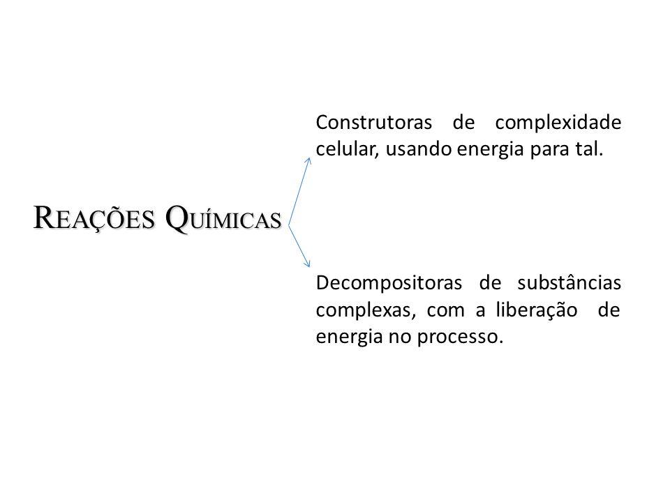 ENERGIA TOTAL = E NERGIA U TILIZÁVEL + E NERGIA N ÃO- U TILIZÁVEL No sistema biológico: ENTALPIA H Energia Total = ENTALPIA ( H ) ENERGIA LIVRE G Energia Utilizável = ENERGIA LIVRE ( G ) ENTROPIAS T Energia não-utilizável = ENTROPIA ( S ) x T