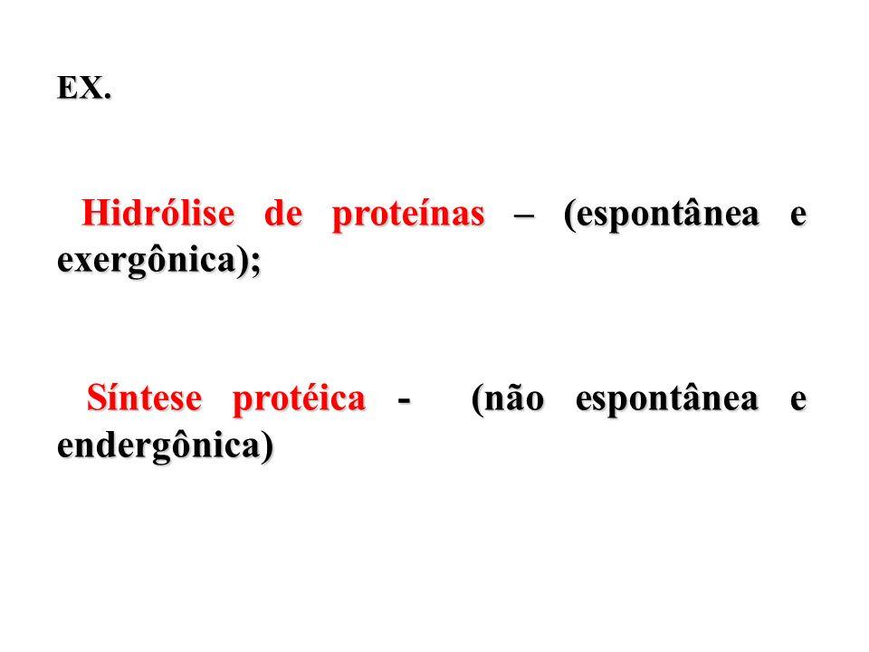 EX. Hidrólise de proteínas – (espontânea e exergônica); Hidrólise de proteínas – (espontânea e exergônica); Síntese protéica - (não espontânea e ender