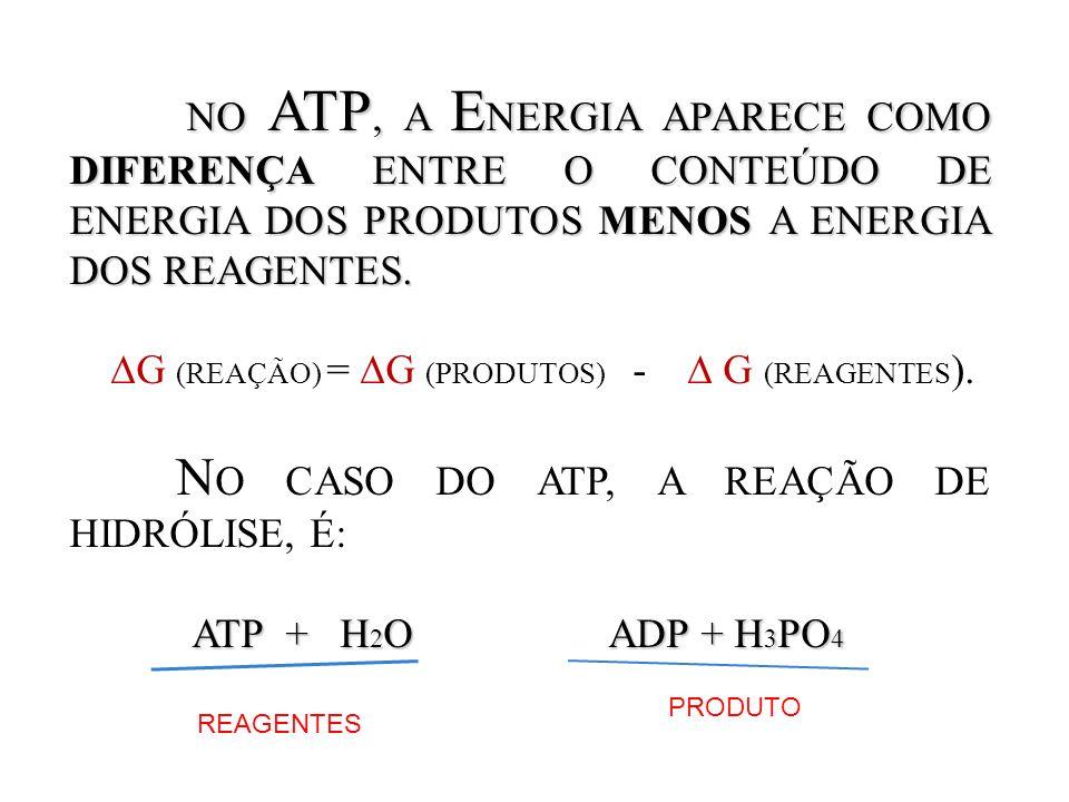 NO ATP, A E NERGIA APARECE COMO DIFERENÇA ENTRE O CONTEÚDO DE ENERGIA DOS PRODUTOS MENOS A ENERGIA DOS REAGENTES. NO ATP, A E NERGIA APARECE COMO DIFE