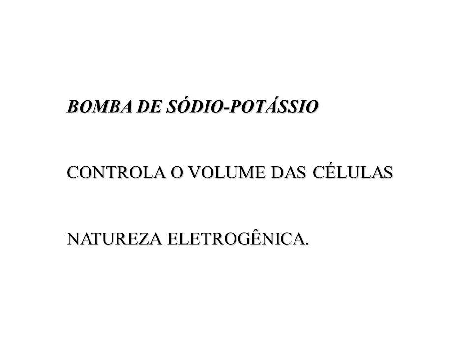 BOMBA DE SÓDIO-POTÁSSIO BOMBA DE SÓDIO-POTÁSSIO CONTROLA O VOLUME DAS CÉLULAS NATUREZA ELETROGÊNICA.