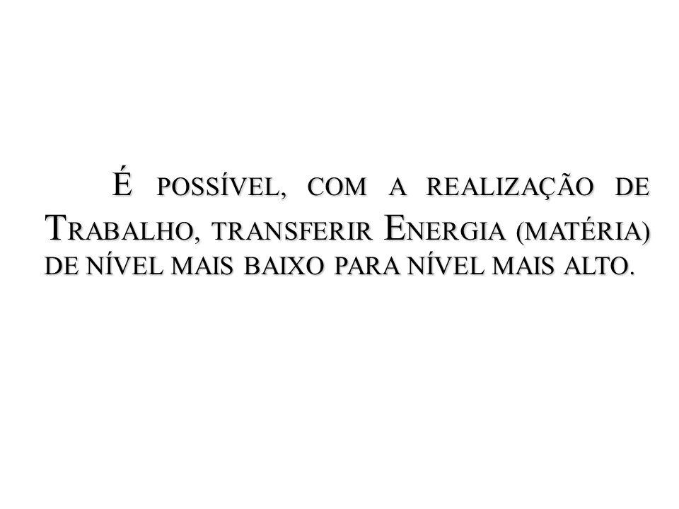 BOMBA DE CÁLCIO BOMBA DE CÁLCIO OS ÍONS SÃO MANTIDOS EM CONCENTRAÇÕES MUITO BAIXAS (CITOSOL).