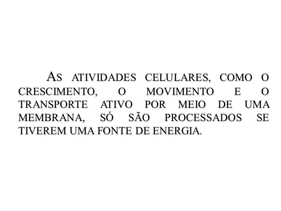 S ISTEMAS ABERTO ABERTO – troca energia com o entorno.