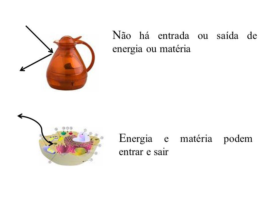 HIDRÓLISE DE ATP HIDRÓLISE DE ATP Ciclo de Ligação de energia....