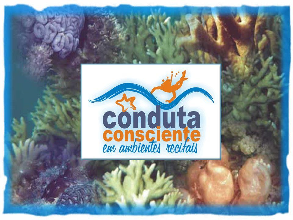 Conduta Consciente em Ambientes Recifais Procure conhecer as riquezas e belezas existentes nos recifes de coral através do mergulho, mas antes busque informações com os profissionais da área e com as administrações das Unidades de Conservação.