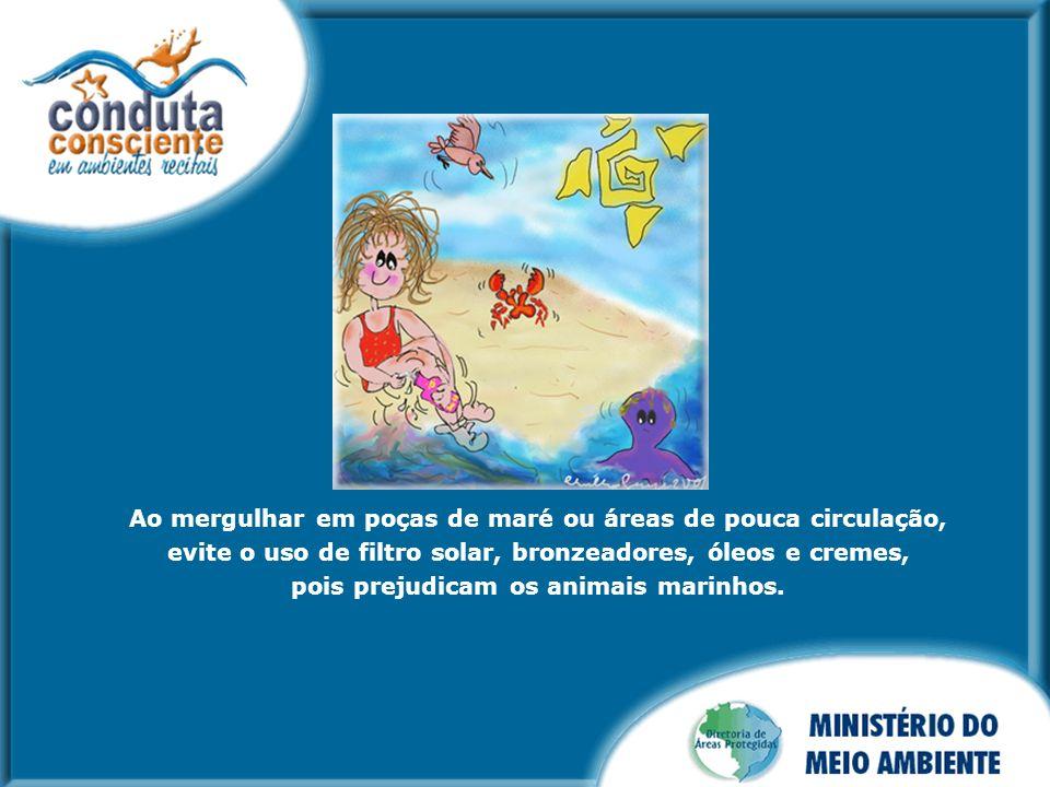 Ao mergulhar em poças de maré ou áreas de pouca circulação, evite o uso de filtro solar, bronzeadores, óleos e cremes, pois prejudicam os animais mari