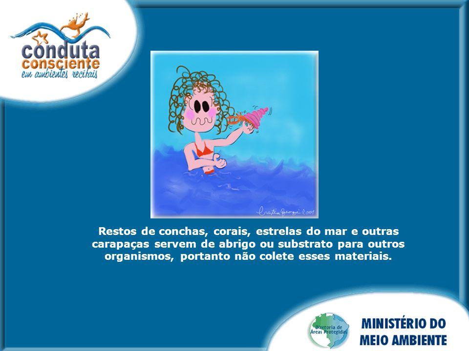 Os equipamentos de mergulho autônomo devem ser mantidos perto do corpo do mergulhador para que os mesmos não destruam os corais.