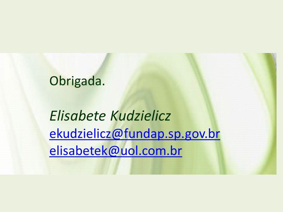 Obrigada. Elisabete Kudzielicz ekudzielicz@fundap.sp.gov.br elisabetek@uol.com.br