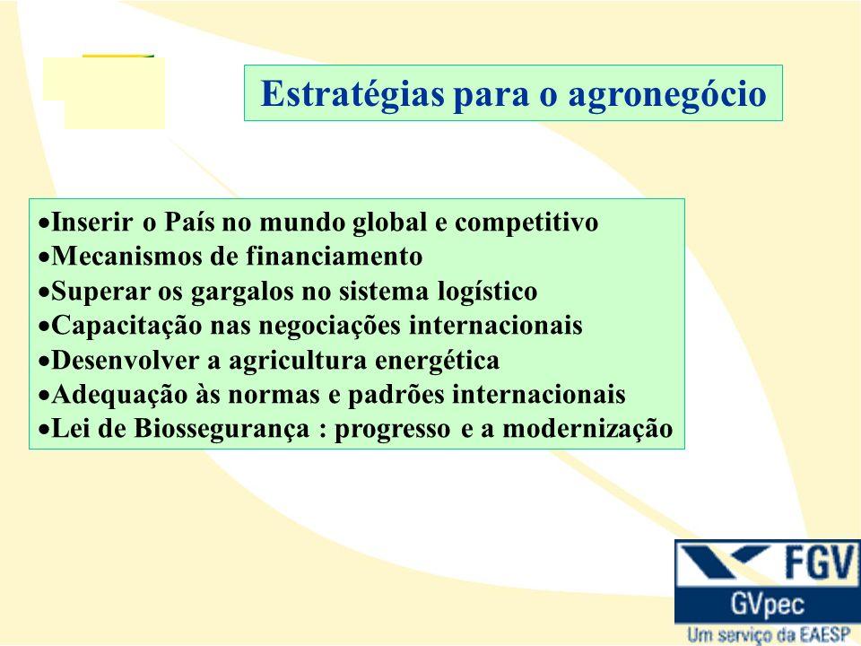 Inserir o País no mundo global e competitivo Mecanismos de financiamento Superar os gargalos no sistema logístico Capacitação nas negociações internacionais Desenvolver a agricultura energética Adequação às normas e padrões internacionais Lei de Biossegurança : progresso e a modernização Estratégias para o agronegócio
