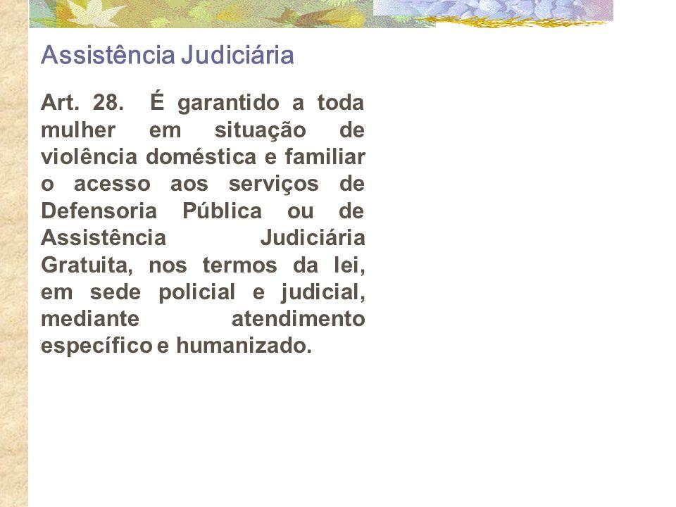 Assistência Judiciária Art. 28. É garantido a toda mulher em situação de violência doméstica e familiar o acesso aos serviços de Defensoria Pública ou
