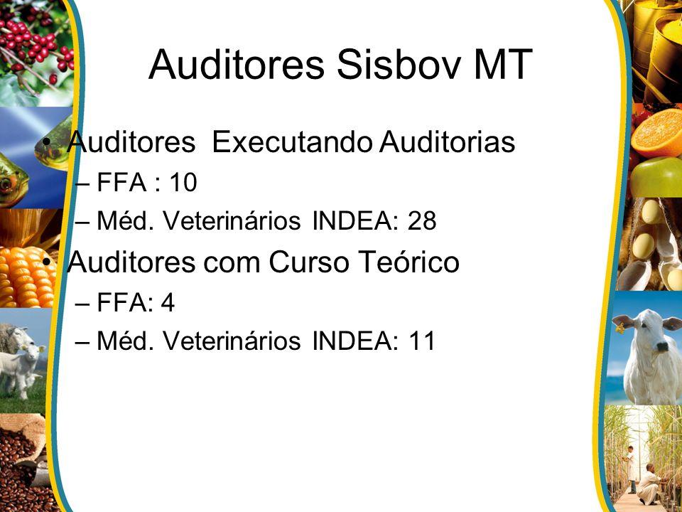Auditores Sisbov MT Auditores Executando Auditorias –FFA : 10 –Méd. Veterinários INDEA: 28 Auditores com Curso Teórico –FFA: 4 –Méd. Veterinários INDE